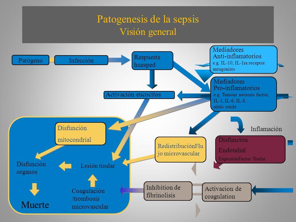 Patogenesis de la sepsis Visión general