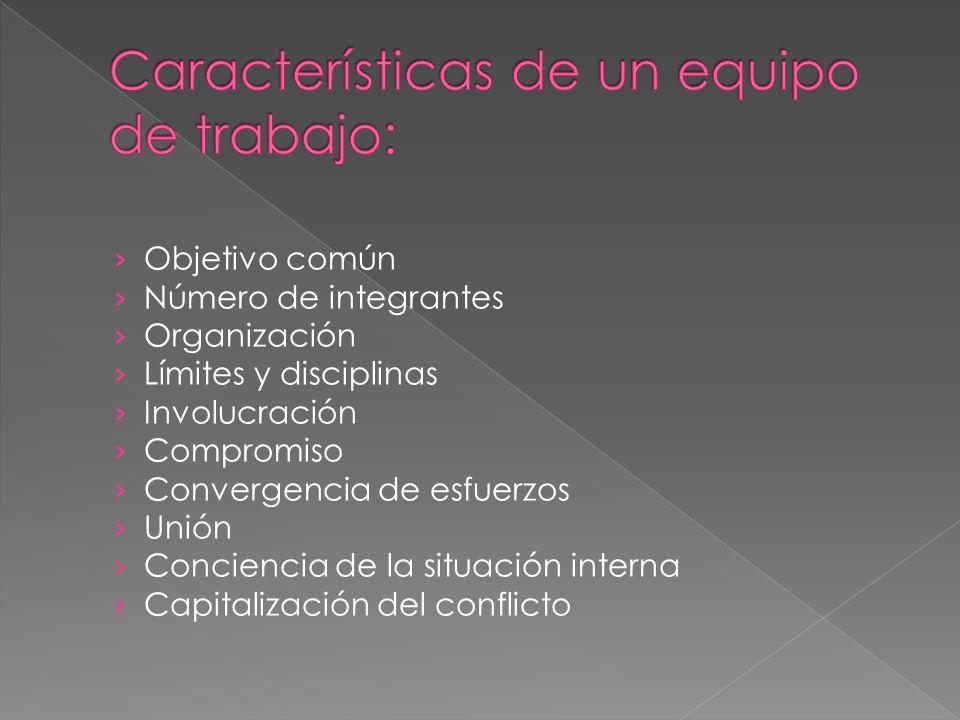Características de un equipo de trabajo: