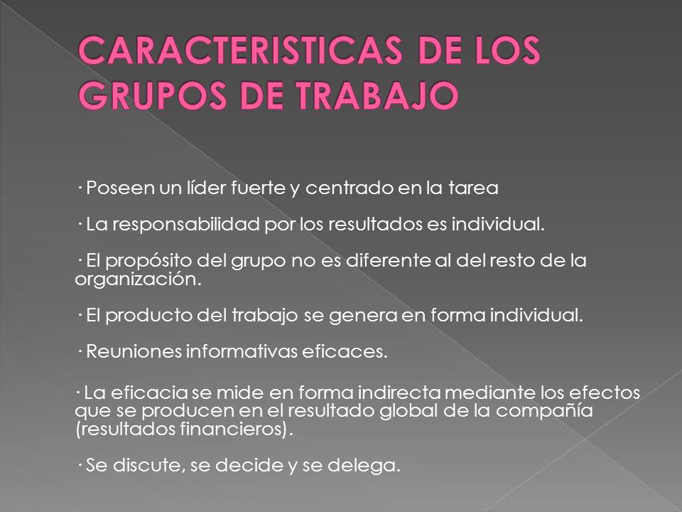 CARACTERISTICAS DE LOS GRUPOS DE TRABAJO