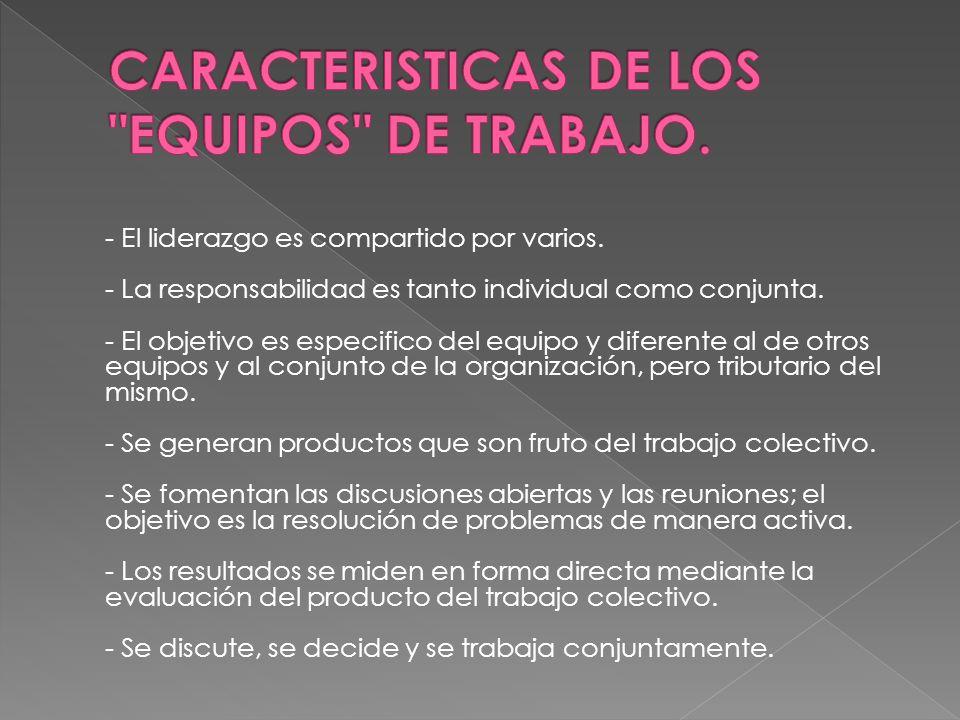 CARACTERISTICAS DE LOS EQUIPOS DE TRABAJO.