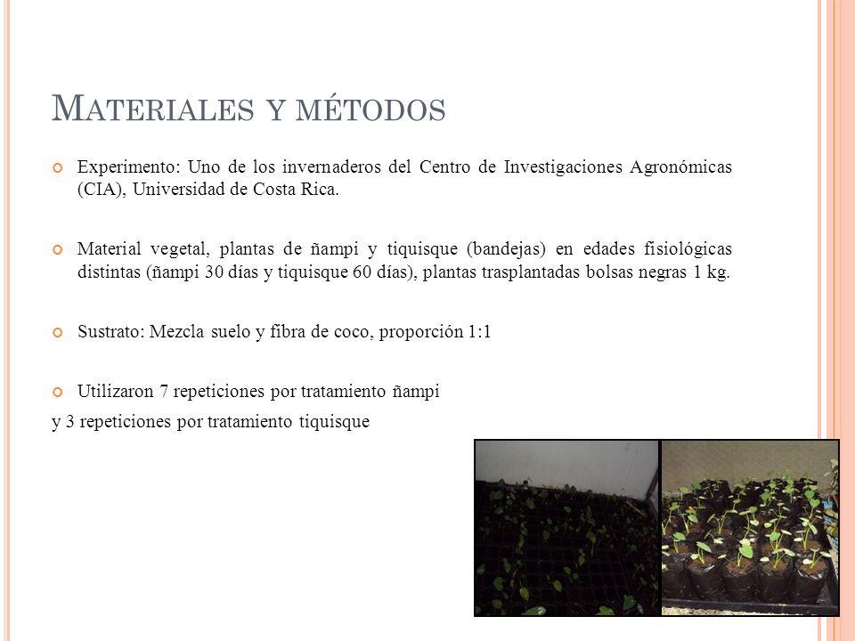 Materiales y métodos Experimento: Uno de los invernaderos del Centro de Investigaciones Agronómicas (CIA), Universidad de Costa Rica.
