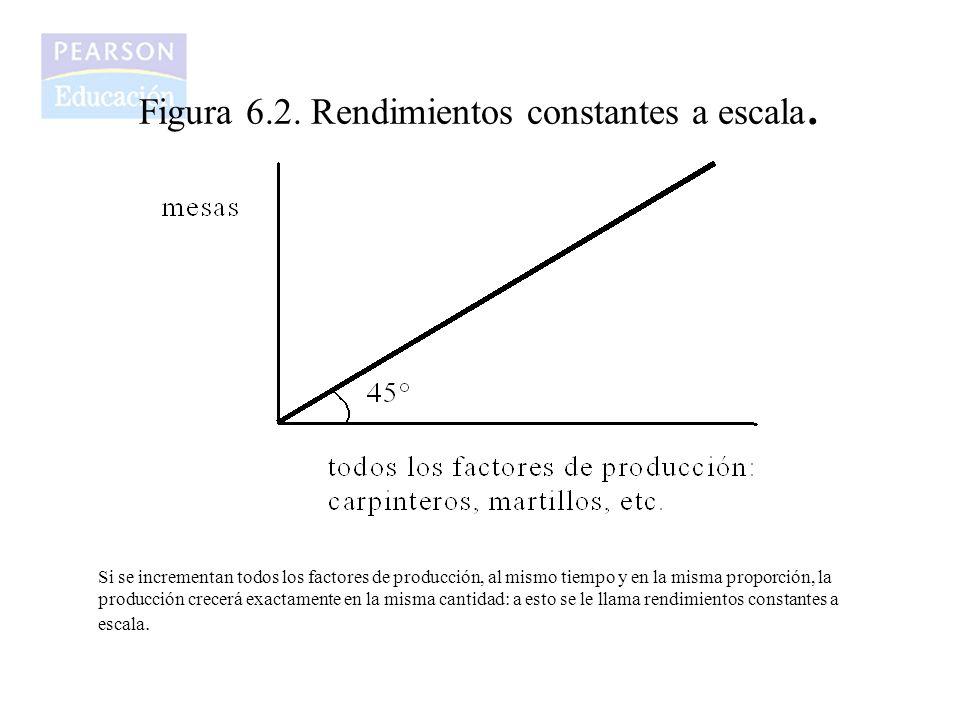 Figura 6.2. Rendimientos constantes a escala.