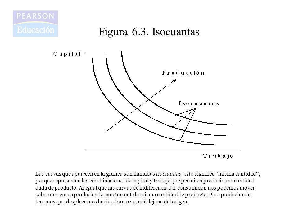 Figura 6.3. Isocuantas