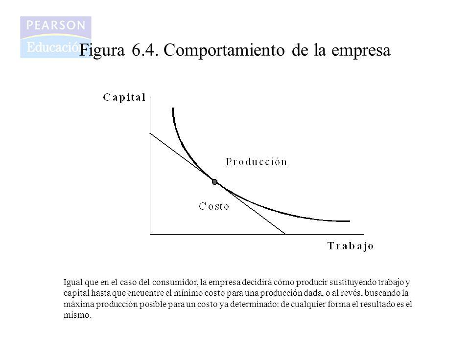 Figura 6.4. Comportamiento de la empresa