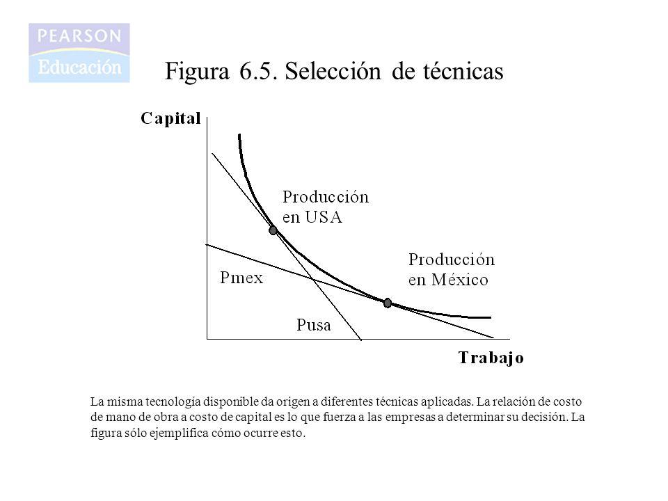 Figura 6.5. Selección de técnicas