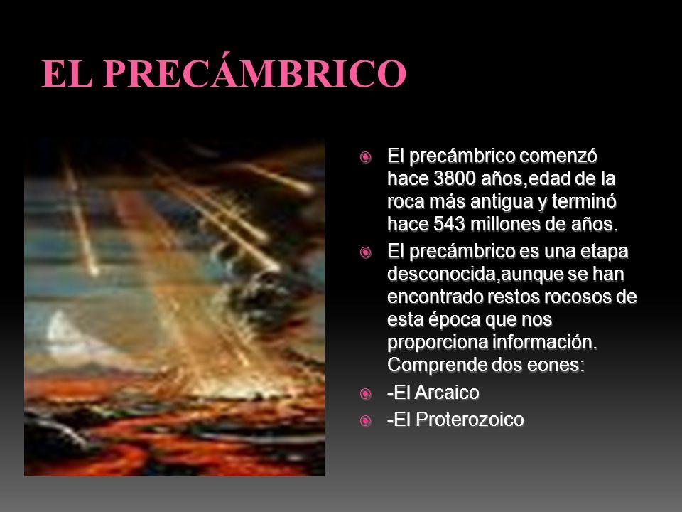 EL PRECÁMBRICO El precámbrico comenzó hace 3800 años,edad de la roca más antigua y terminó hace 543 millones de años.
