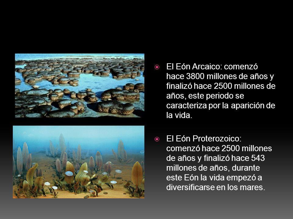 El Eón Arcaico: comenzó hace 3800 millones de años y finalizó hace 2500 millones de años, este periodo se caracteriza por la aparición de la vida.
