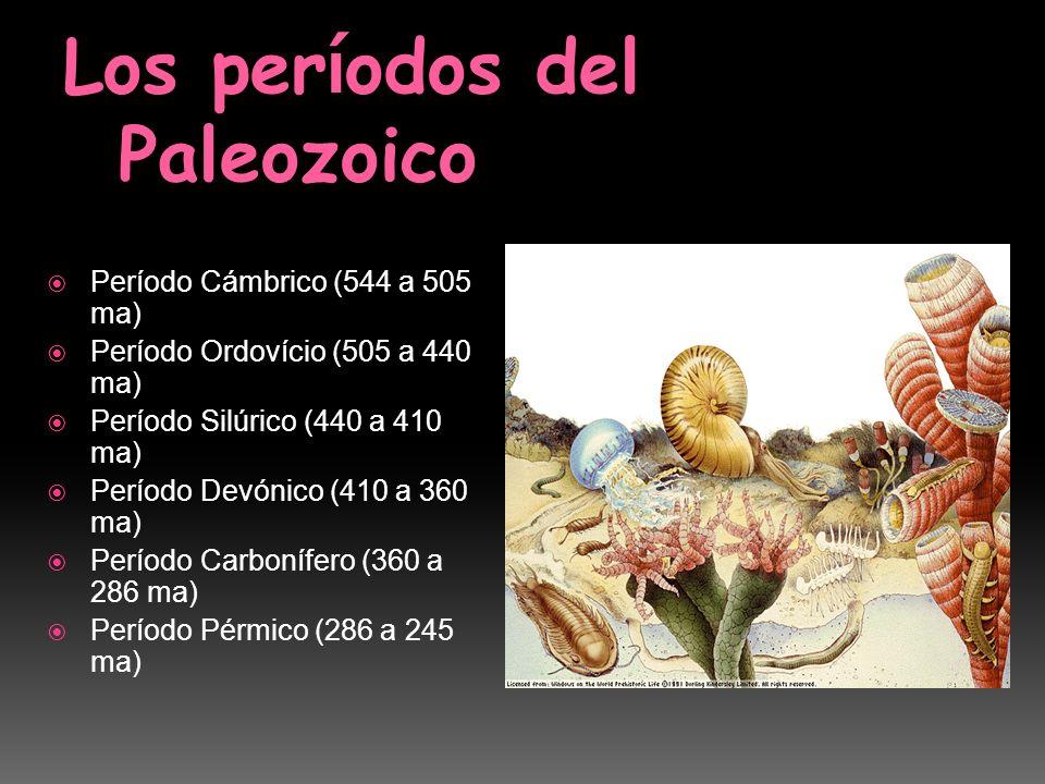 Los períodos del Paleozoico
