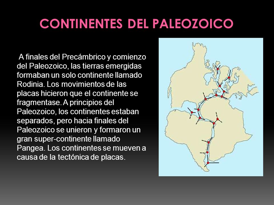 CONTINENTES DEL PALEOZOICO