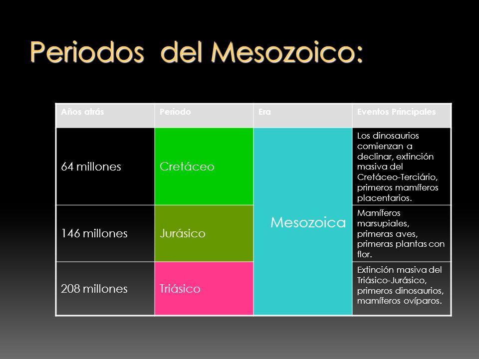 Periodos del Mesozoico: