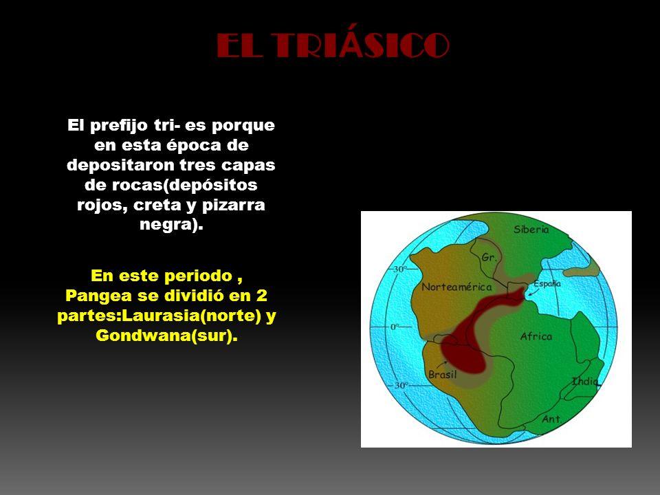 EL TRIÁSICO El prefijo tri- es porque en esta época de depositaron tres capas de rocas(depósitos rojos, creta y pizarra negra).