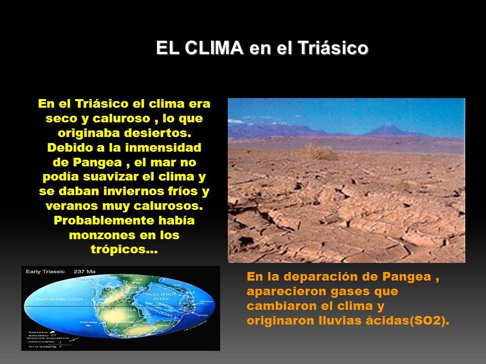 EL CLIMA en el Triásico
