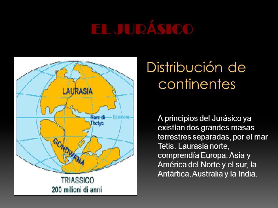 EL JURÁSICO Distribución de continentes