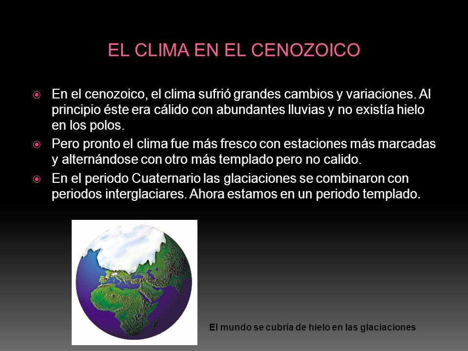 EL CLIMA EN EL CENOZOICO