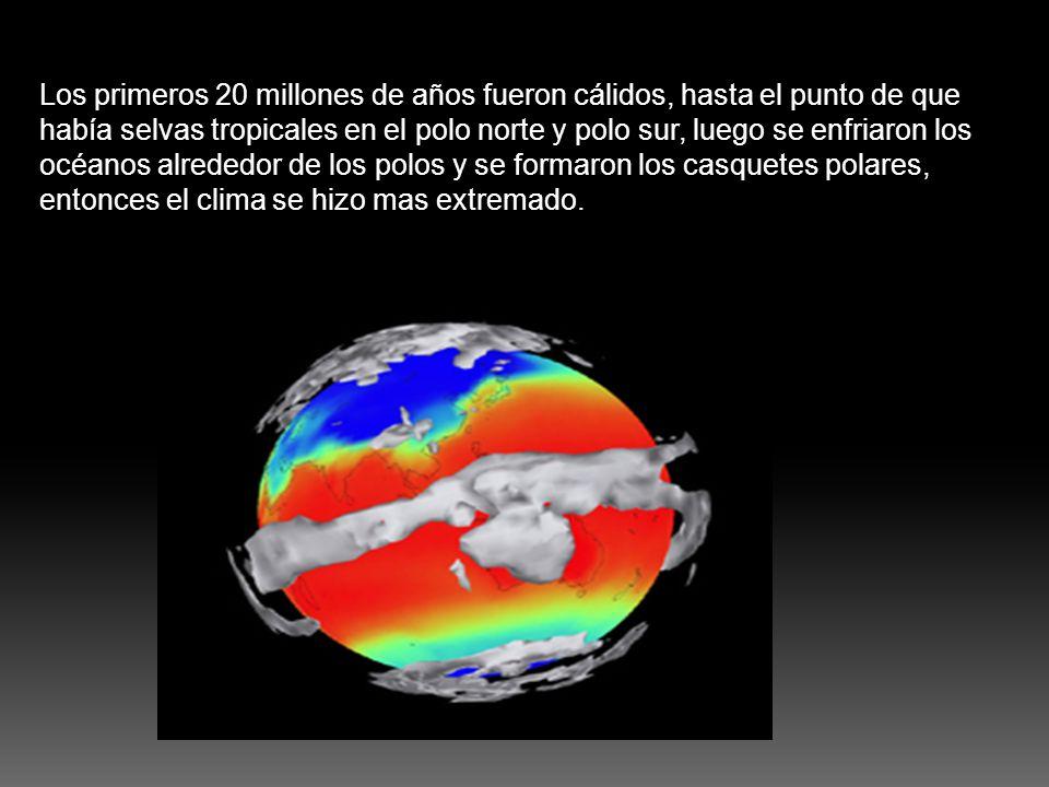 Los primeros 20 millones de años fueron cálidos, hasta el punto de que había selvas tropicales en el polo norte y polo sur, luego se enfriaron los océanos alrededor de los polos y se formaron los casquetes polares, entonces el clima se hizo mas extremado.