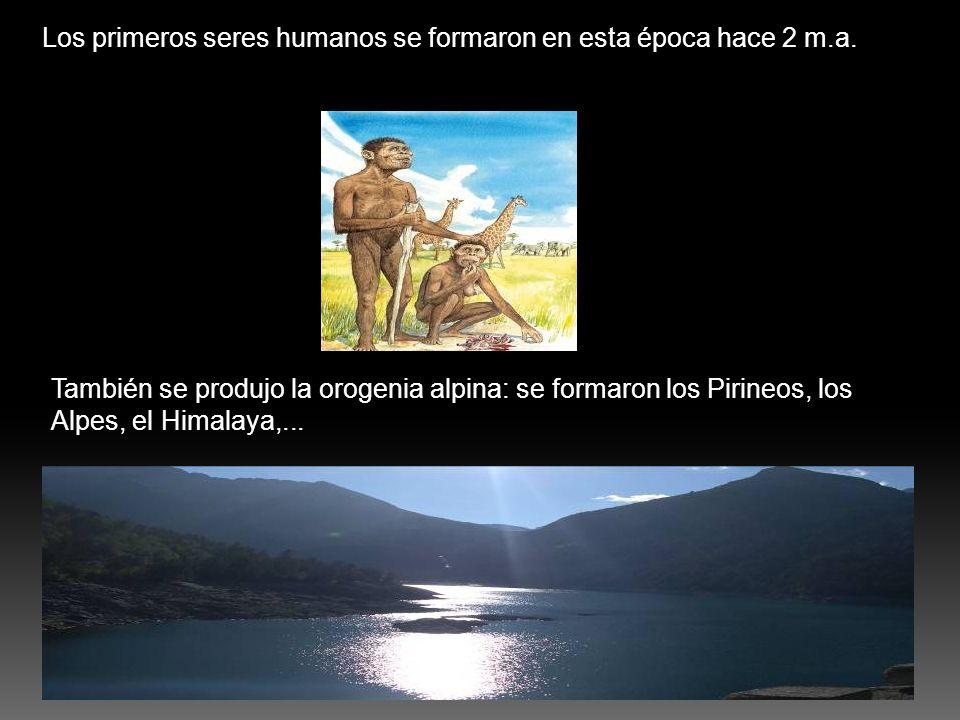Los primeros seres humanos se formaron en esta época hace 2 m.a.