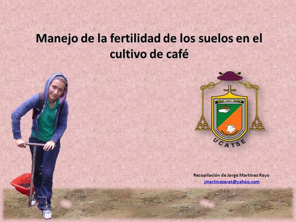 Manejo de la fertilidad de los suelos en el cultivo de café