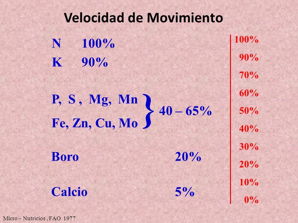 Velocidad de Movimiento