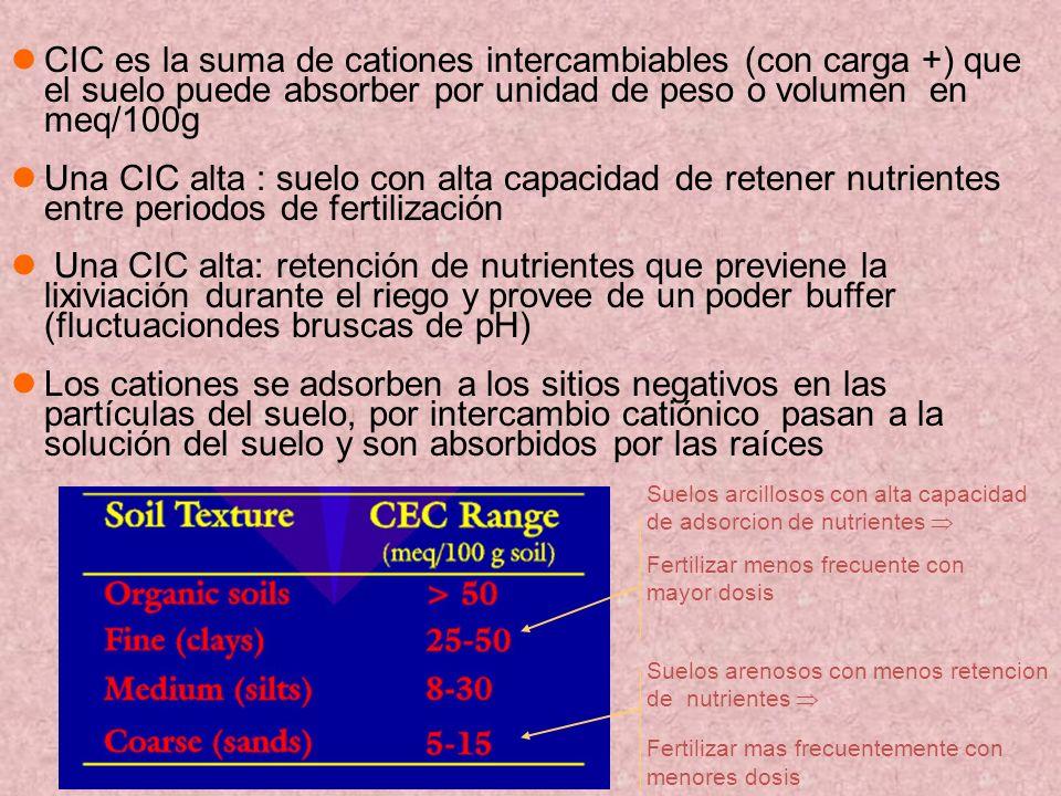 CIC es la suma de cationes intercambiables (con carga +) que el suelo puede absorber por unidad de peso o volumen en meq/100g