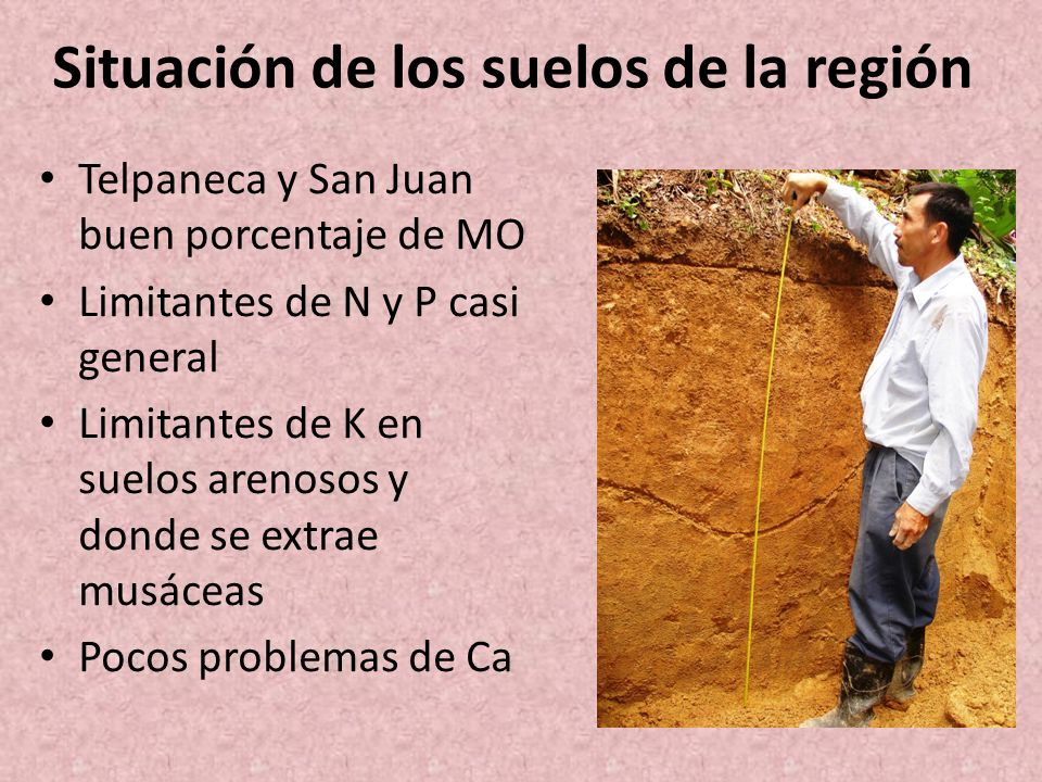 Situación de los suelos de la región