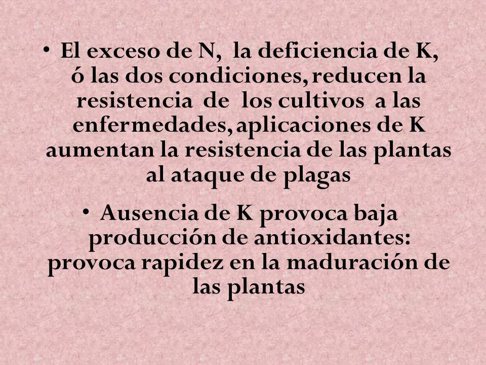 El exceso de N, la deficiencia de K, ó las dos condiciones, reducen la resistencia de los cultivos a las enfermedades, aplicaciones de K aumentan la resistencia de las plantas al ataque de plagas