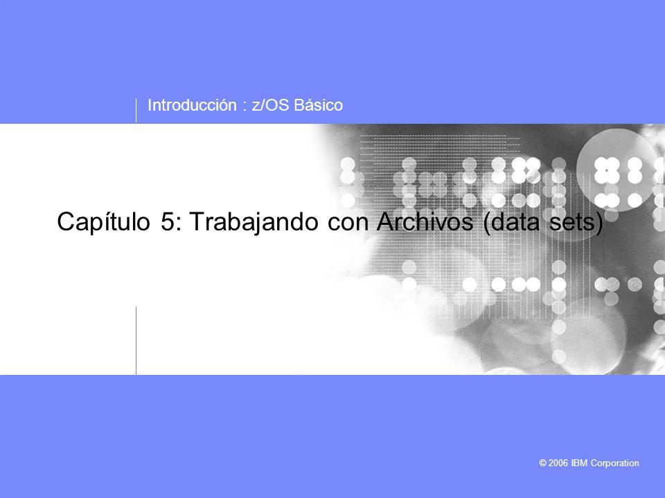 Capítulo 5: Trabajando con Archivos (data sets)