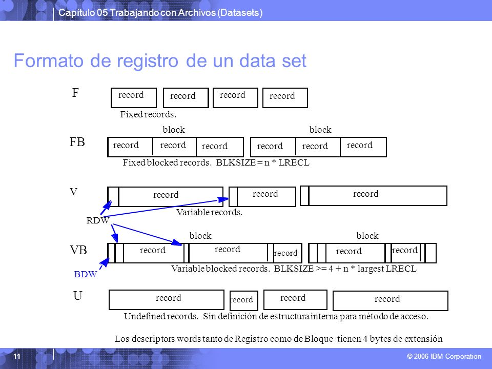 Formato de registro de un data set