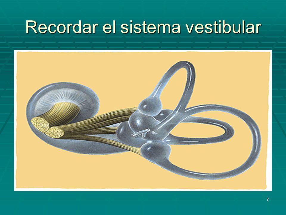 Recordar el sistema vestibular