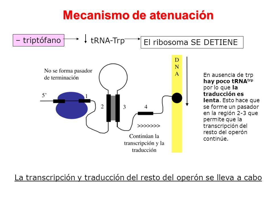 Mecanismo de atenuación