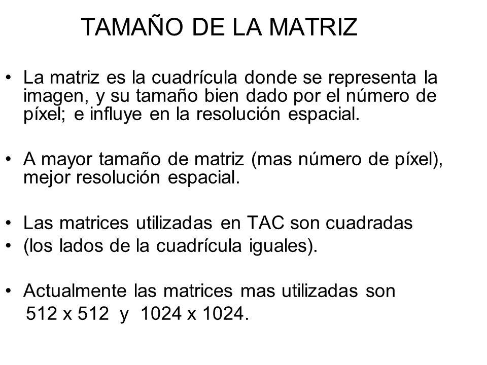 TAMAÑO DE LA MATRIZ