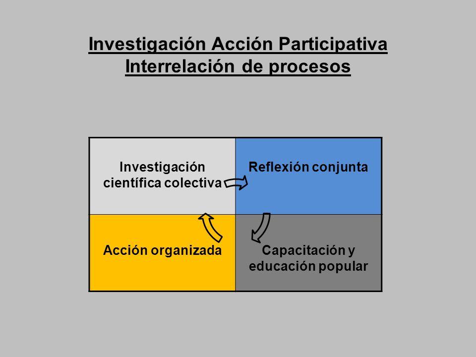 Investigación Acción Participativa Interrelación de procesos