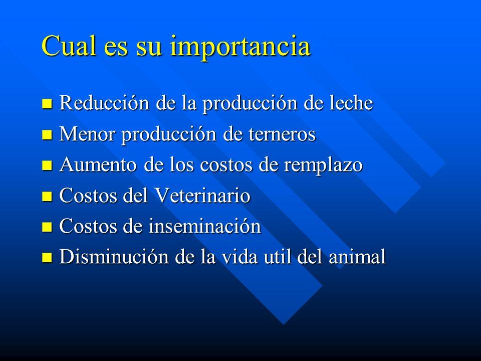 Cual es su importancia Reducción de la producción de leche