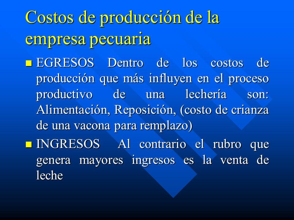 Costos de producción de la empresa pecuaria
