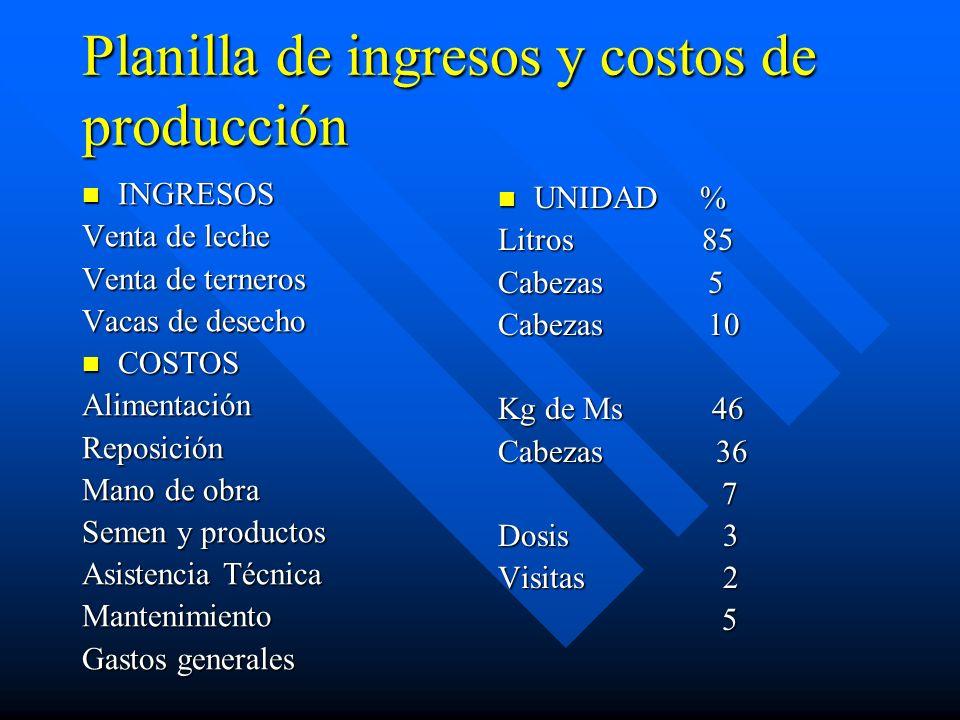 Planilla de ingresos y costos de producción