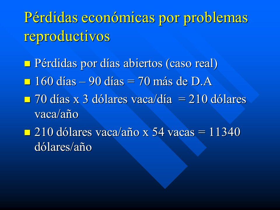 Pérdidas económicas por problemas reproductivos