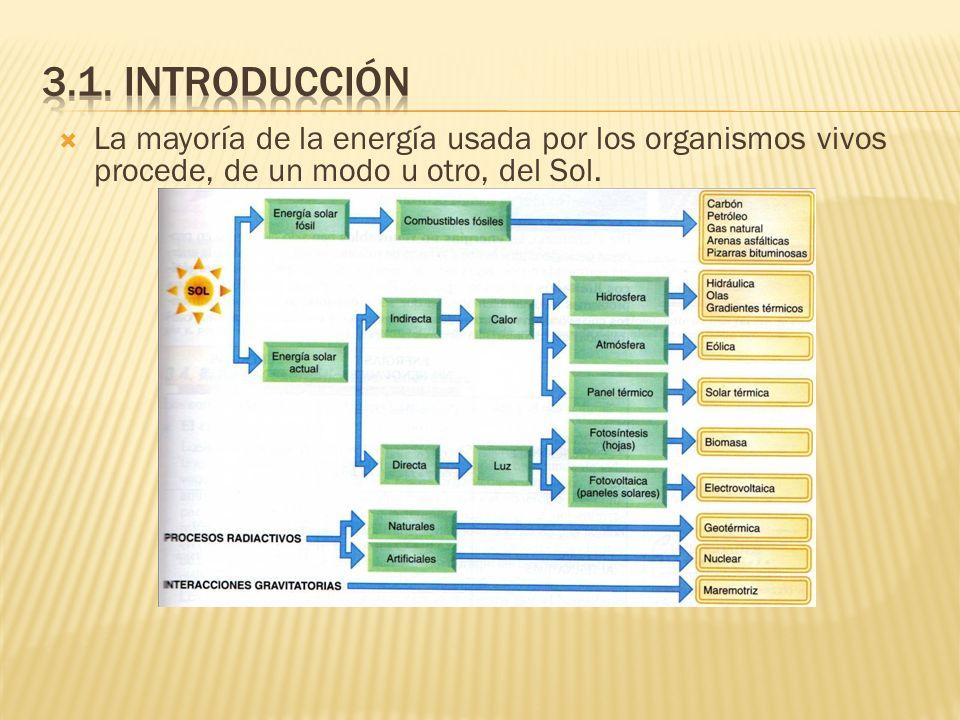 3.1. introducciónLa mayoría de la energía usada por los organismos vivos procede, de un modo u otro, del Sol.