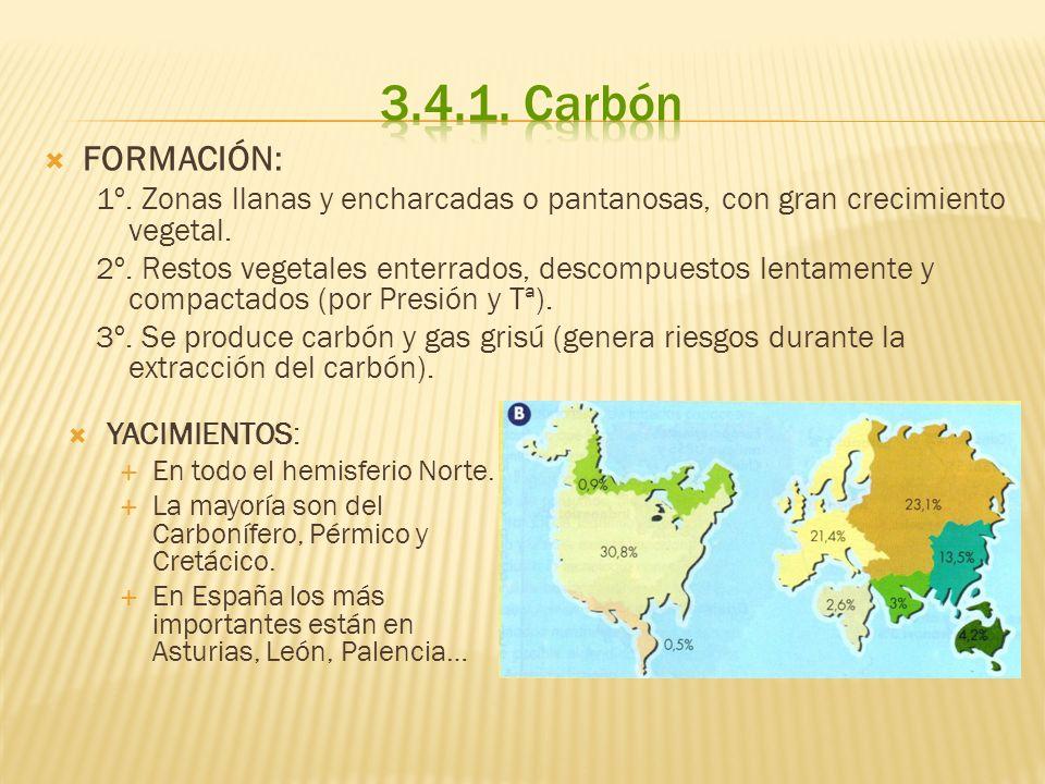 3.4.1. CarbónFORMACIÓN: 1º. Zonas llanas y encharcadas o pantanosas, con gran crecimiento vegetal.