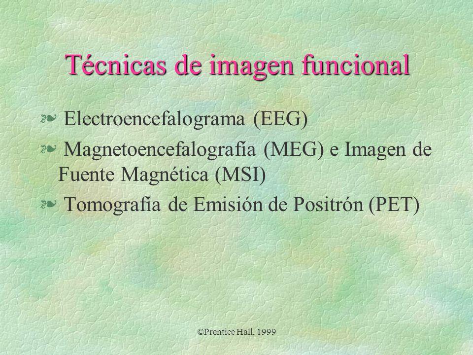 Técnicas de imagen funcional