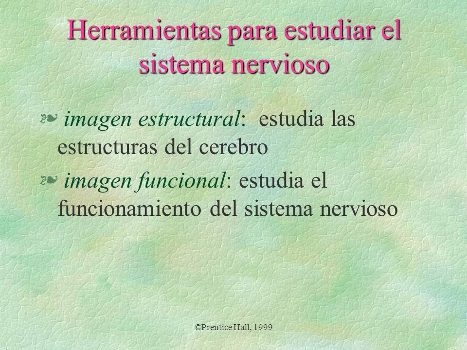 Herramientas para estudiar el sistema nervioso