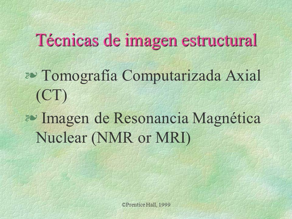 Técnicas de imagen estructural