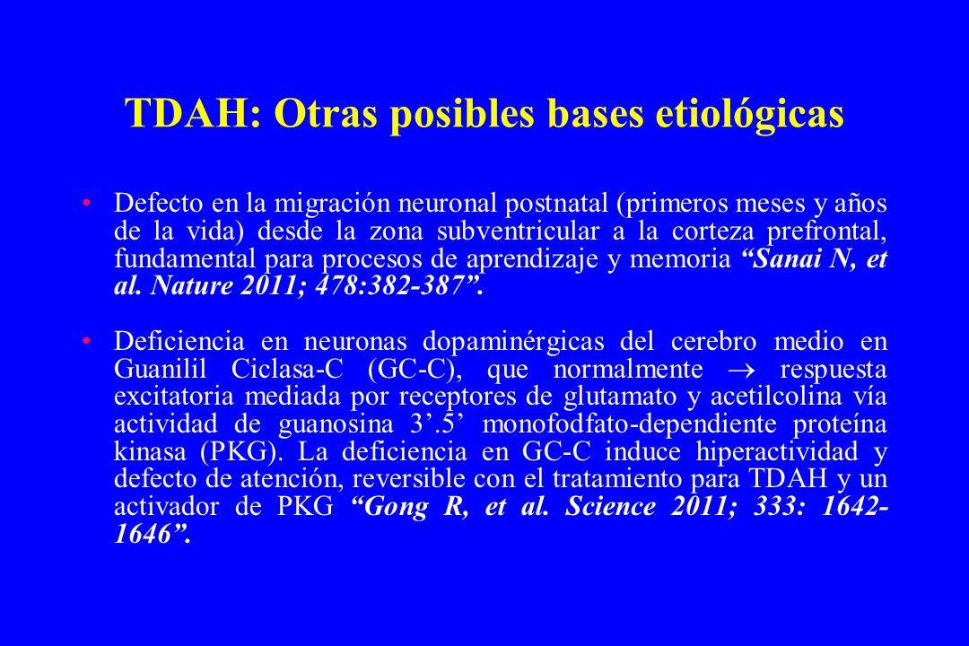 TDAH: Otras posibles bases etiológicas