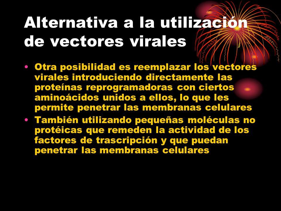 Alternativa a la utilización de vectores virales