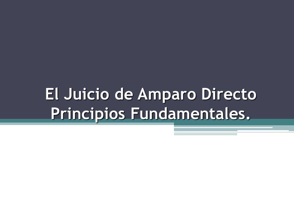El Juicio de Amparo Directo Principios Fundamentales.