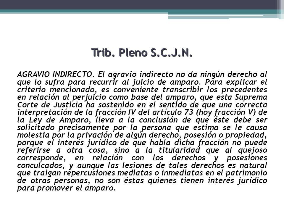 Trib. Pleno S.C.J.N.