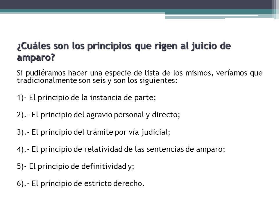 ¿Cuáles son los principios que rigen al juicio de amparo