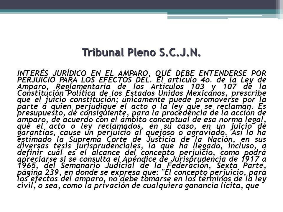 Tribunal Pleno S.C.J.N.