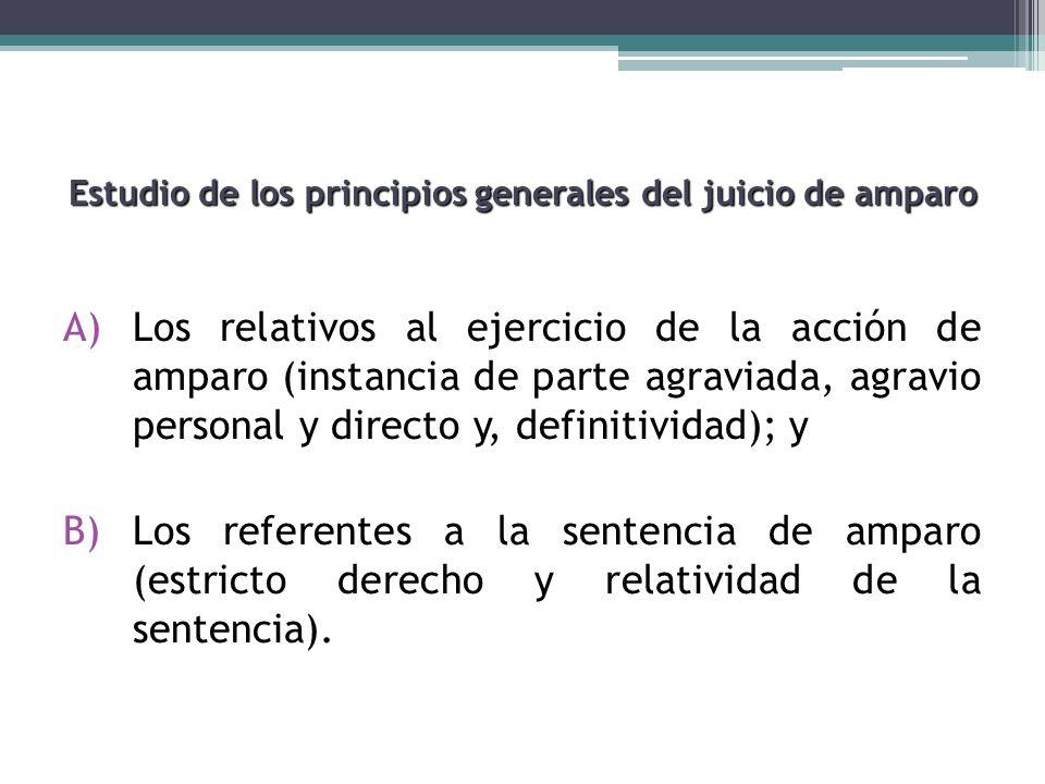 Estudio de los principios generales del juicio de amparo