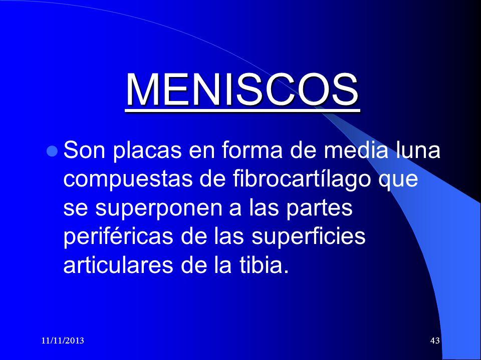 MENISCOS
