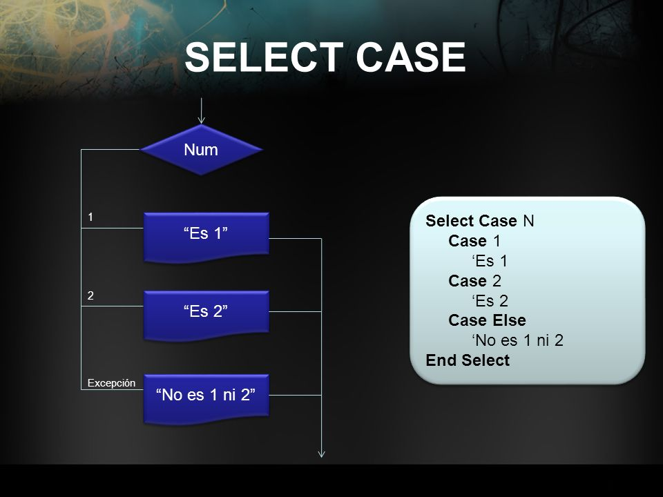 SELECT CASE Num Select Case N Case 1 Es 1 'Es 1 Case 2 'Es 2