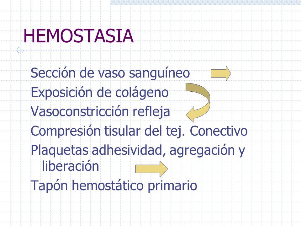 HEMOSTASIA Sección de vaso sanguíneo Exposición de colágeno